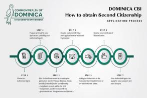 Dominica Citizenship By Investment: An Applicant's Milestones